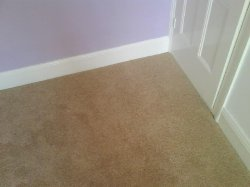 Carpet Fitting Costs