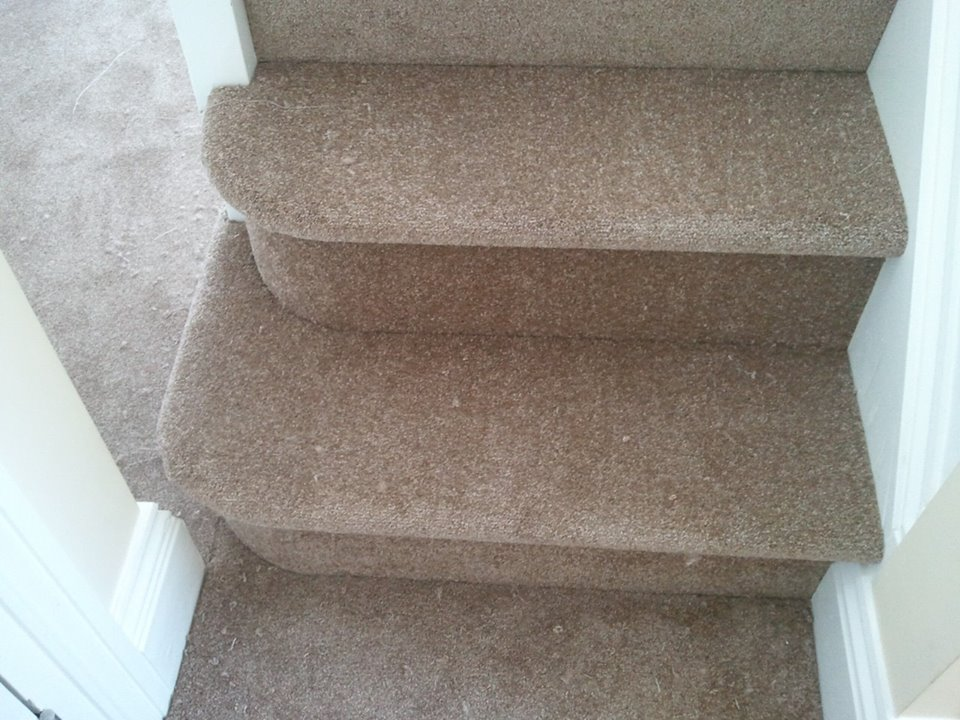 Some tidy looking bull-nose stairs we fitted for a happy customer in Liskeard.